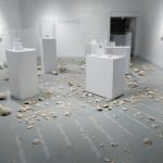 Osmia Avosetta, November 2012 Anna Leonowens Gallery, NSCAD University Halifax, Nova Scotia, Canada