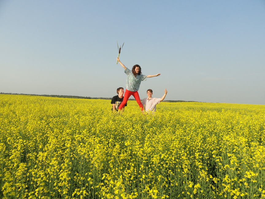 Colorful Canola Fields